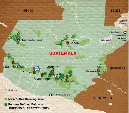 Кофейные регионы Гватемалы